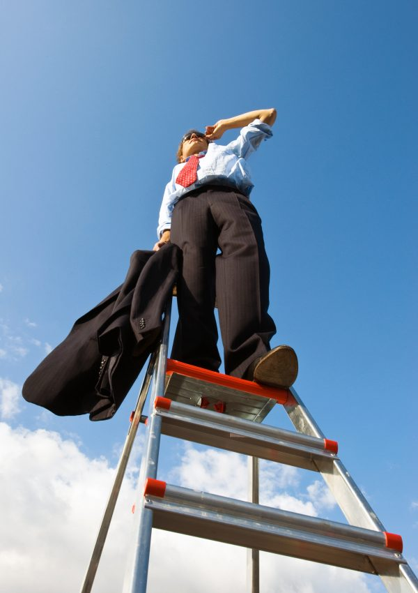 Businessman, standing on a ladder, representing the manager with a helicopter overview of his business.