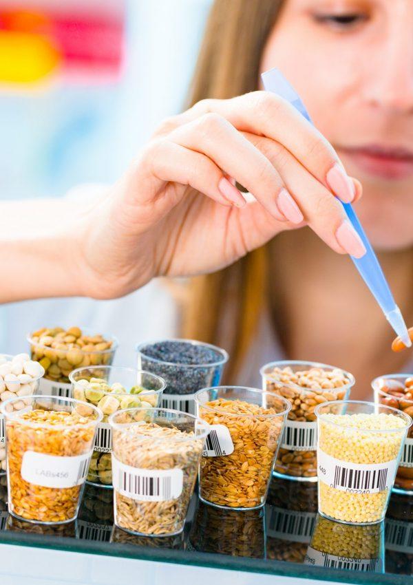 Blog-Alimentos-Tecnólogo