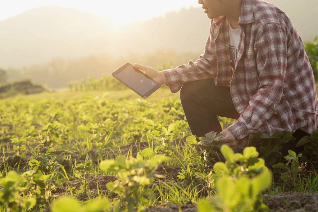 Um homem no meio de uma plantação em propriedade rural e um tablet nas mãos