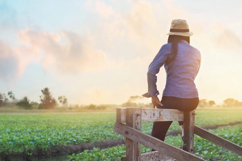 Moça sentada em uma porteira de maneira olhando o entardecer em uma fazenda