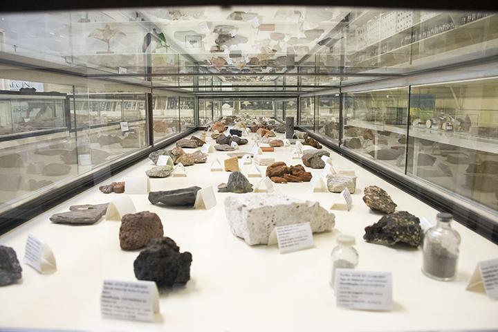 Ser professor: rochas e minerais também ajudam na formação do biólogo