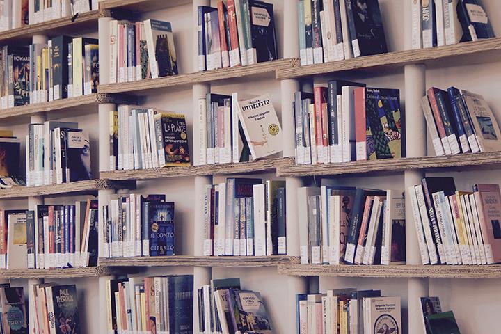 Livros e livros: uma estante de madeira repleta de livros organizados
